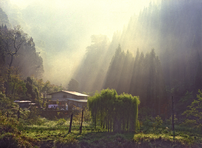 2006 Photography Competition Excellent Work Zhang, Kun-hui - Morning Light