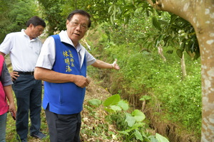 連至 縣府將花費470萬元 修繕中寮鄉道農路及排水 完整照片